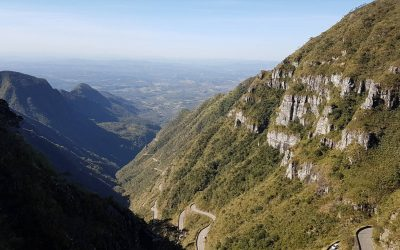 A viticultura de altitude no planalto catarinense (Parte 1)